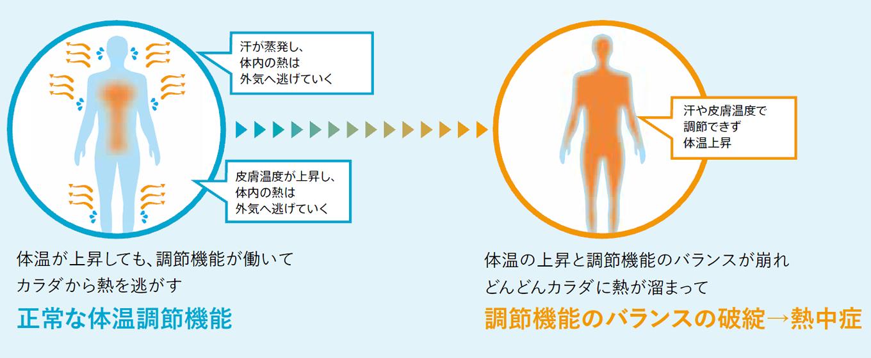 熱中症の基礎知識
