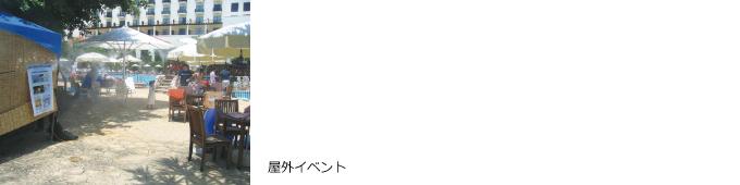 mist_jirei