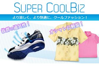 supercoolbiz2